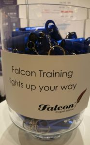 Falcon Training Torches Display